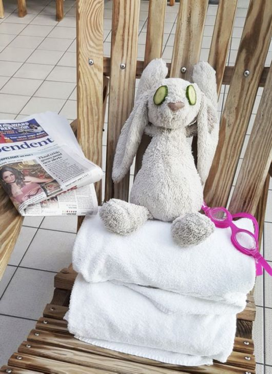 Cute Little Girl Forgets Her Stuffed Bunny At Hotel, Staff Takes It On Adventure