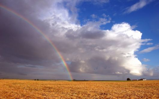 Click to Enlarge - Beautiful Rainbow Wallpapers